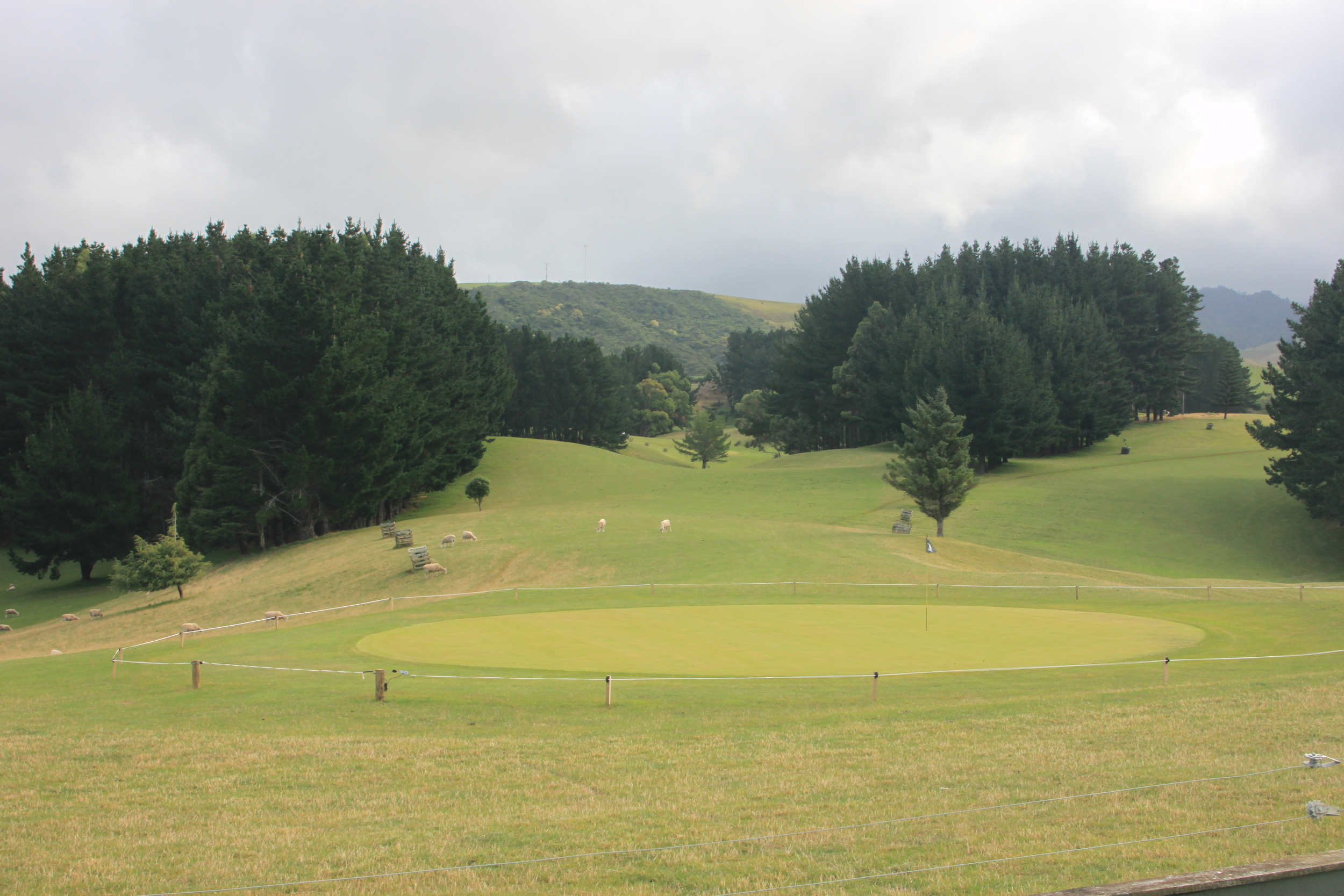Raglan Parc Golf Club - New Zealand
