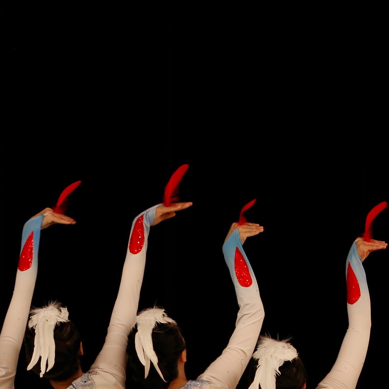 mongolian-swan-migration - 4.jpg