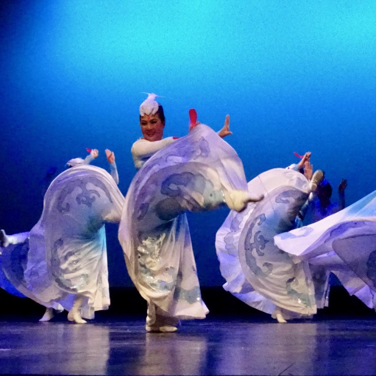 mongolian-swan-migration - 8.jpg