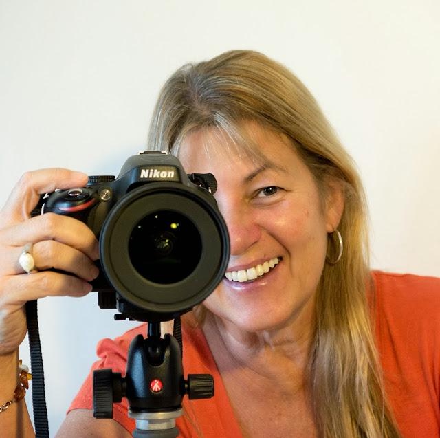 Tracy Ryan Photography