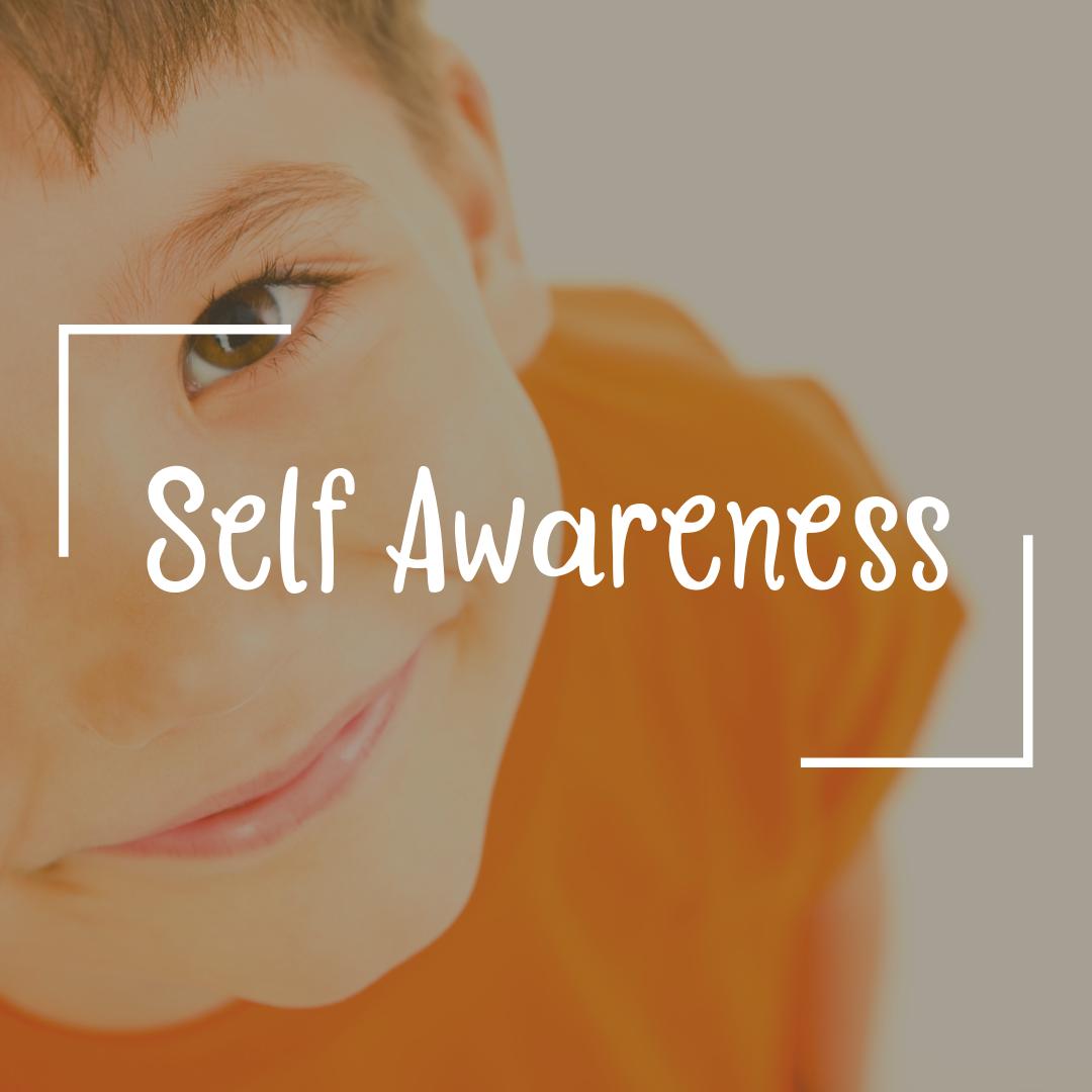Self awareness sk.png
