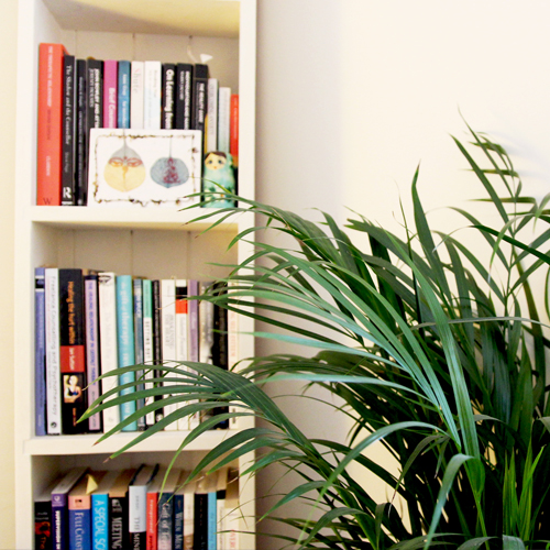 counselling-psychotherapy-therapy-rooms-salisbury-newbury-willsmither