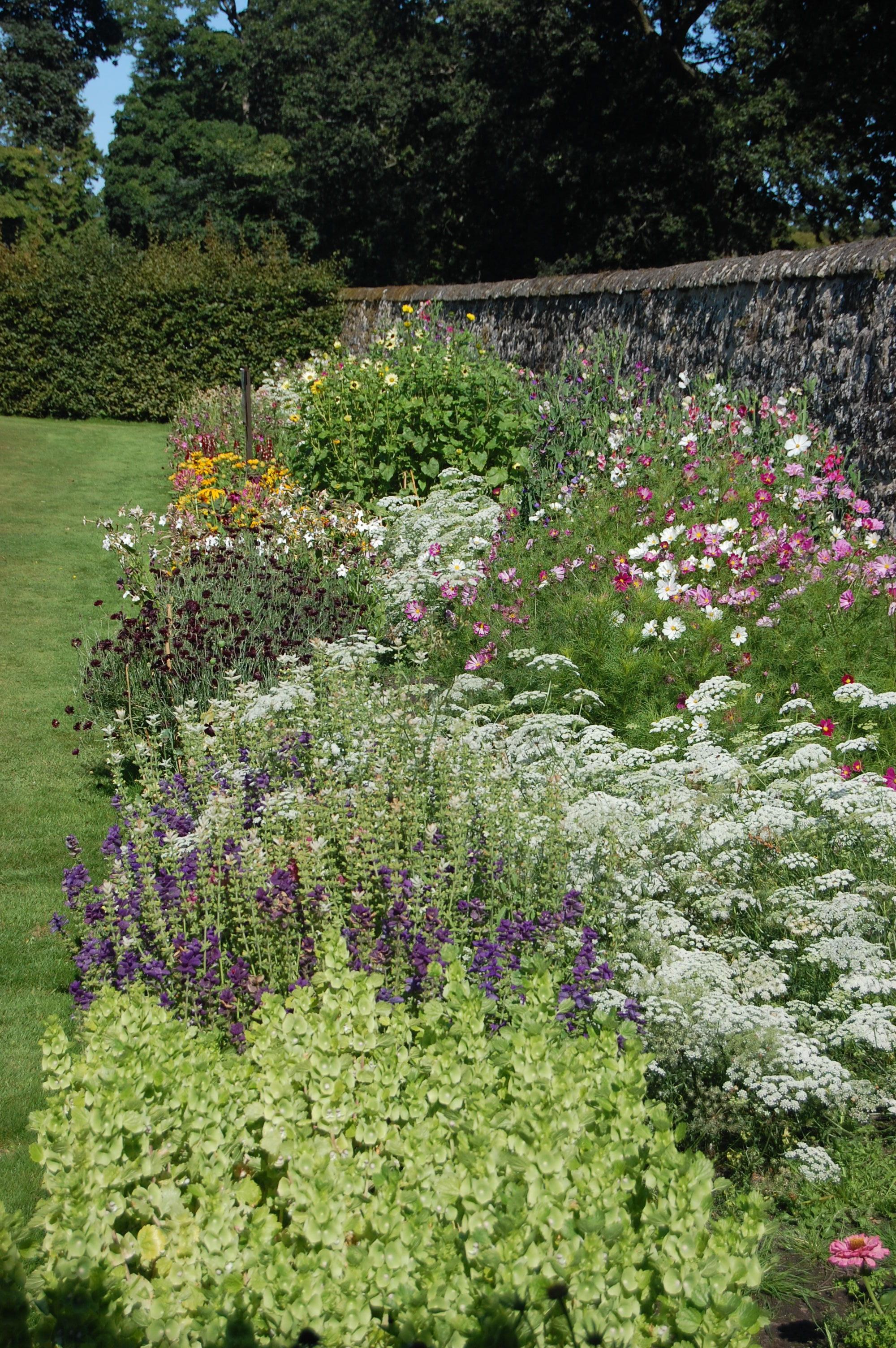 walled garden in bloom.JPG