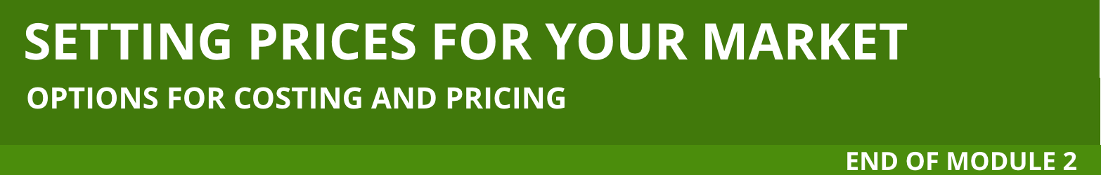 Header for Options for Costing and Pricing