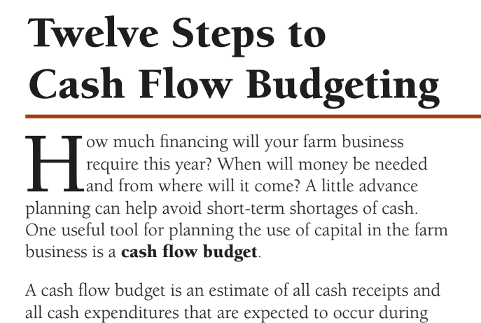 This resource from Iowa State University takes you through twelve steps to create a detailed cash flow budget.  Click to view this PDF.