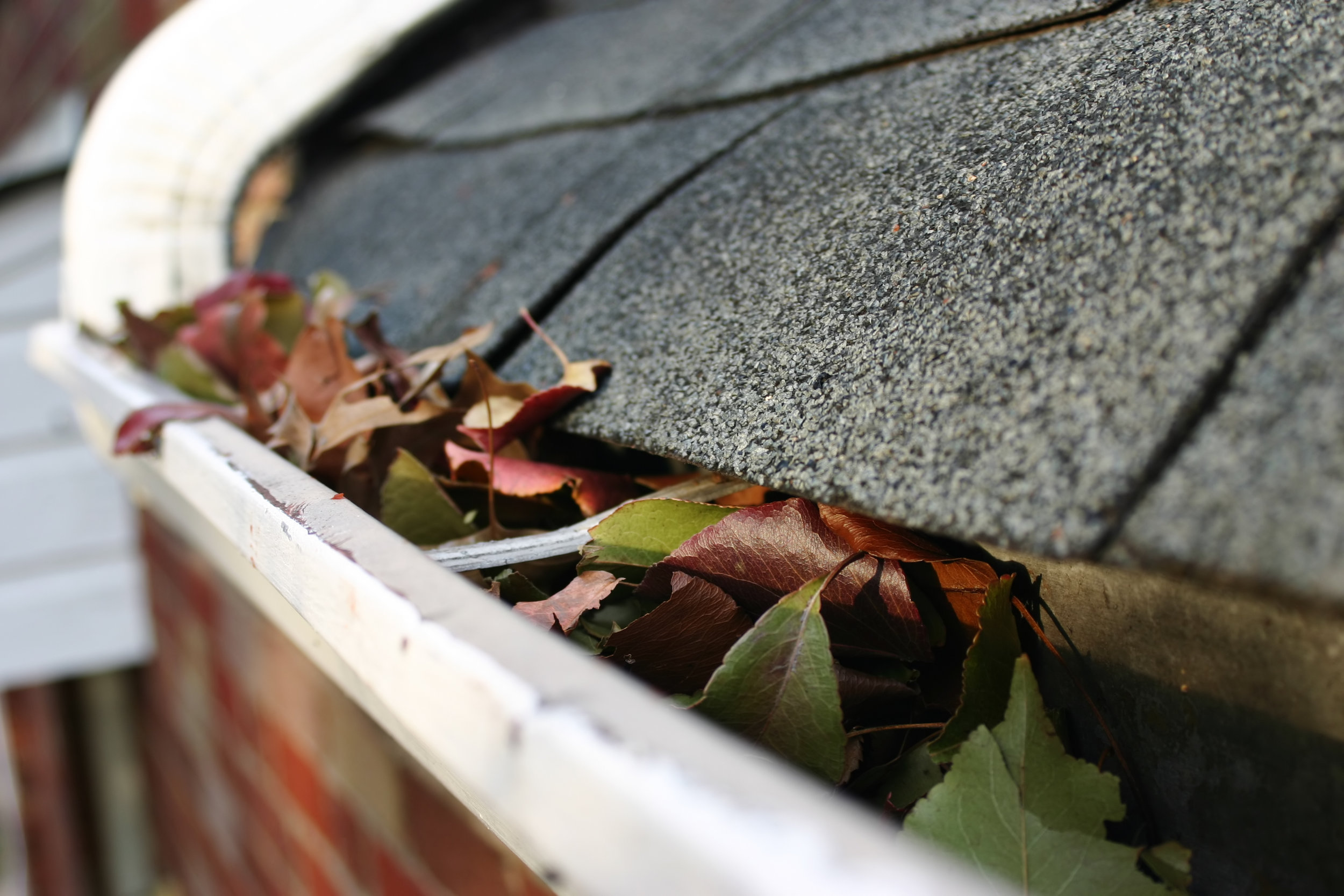 Let us handle the hassle.   Gutter Cleaning    Get a Free Quote