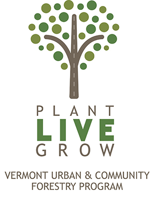 - Vermont Urban and Community Forestry is a great place to get up to date information on tree information specific to Vermont. You can find out about diseases, tree selection, events and more.