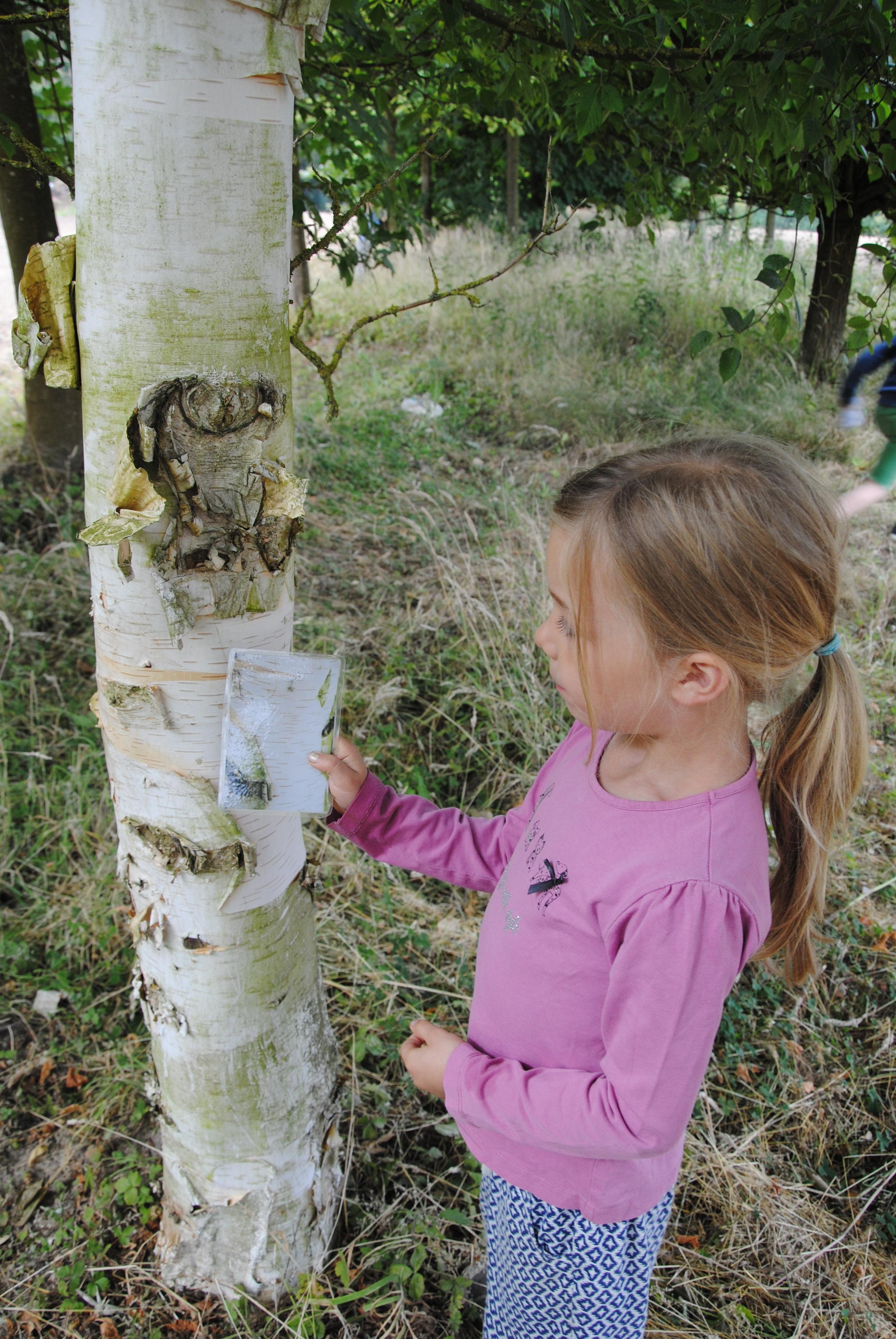 photo-ferme-ecologie-belgique-bio-pedagogie-permaculture-enfants-nature.JPG