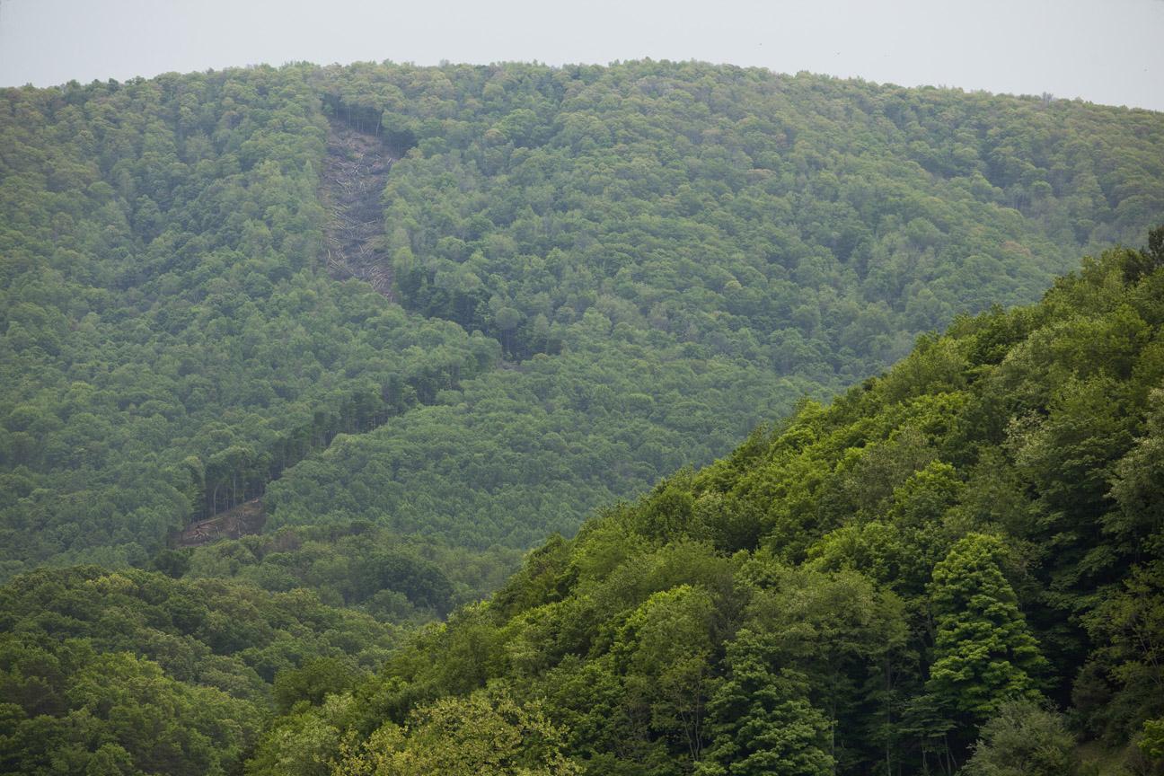 West Virginia Pipeline Protest.jpg