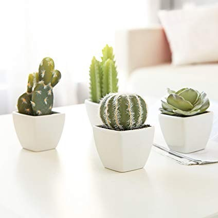 no watering or feeding - and oh so cute, this artificial mini succulent instantly brightens any room 🌵🌵🌵🌵🌵💫💫💫💫💫 (get yours in the Reverance Collection) #reverancecollection #subscriptionbox #dance #succulents #cacti #mini #ordernow