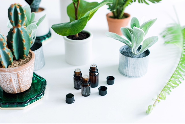 Pure oils. - All doTERRA essential oils are pure and they are potent! The oils are sourced from around the world and carefully tested to have the correct chemical compouds (and NOTHING added to them).