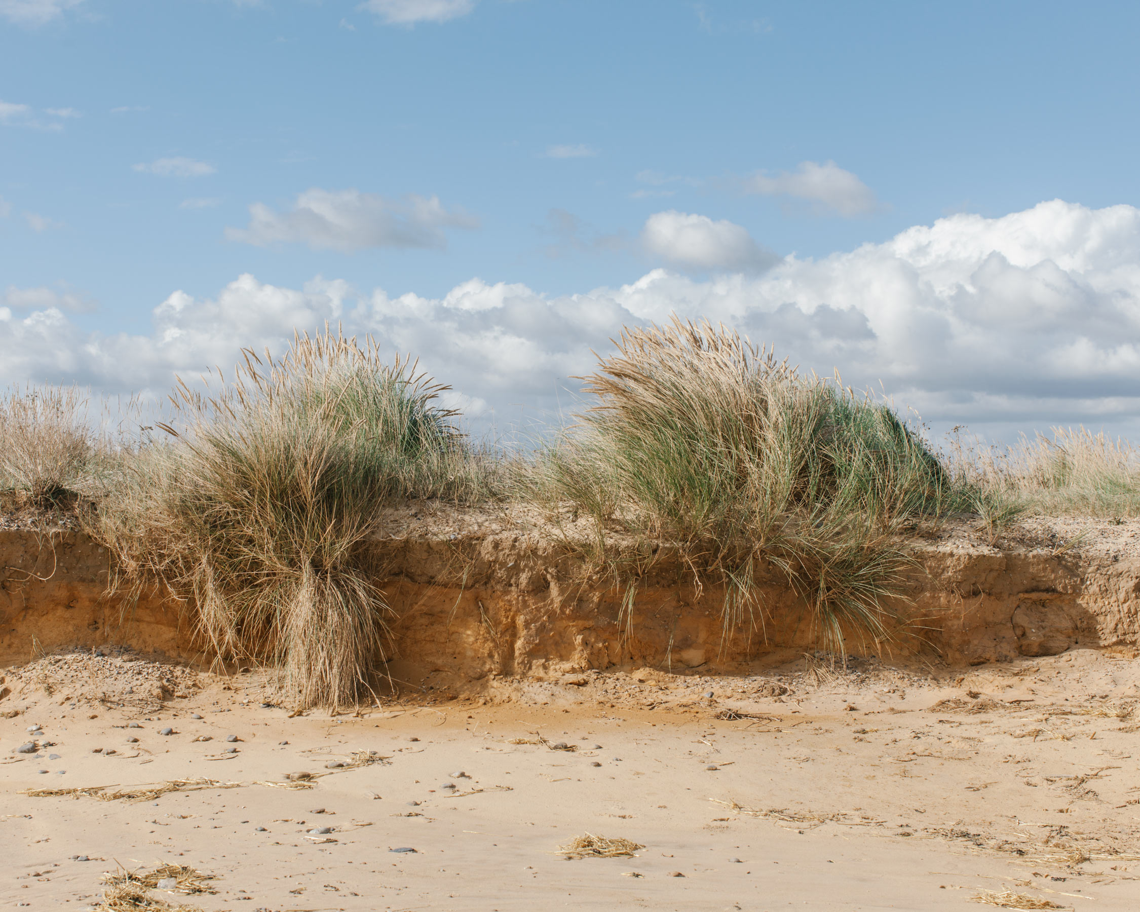 A mere 450,000 years ago the land groaned under an ice sheet perhaps half a mile thick. Each period has left a temporary legacy in the rocks of Suffolk: a wealth of sands, gravels, silts, clays and limestones.