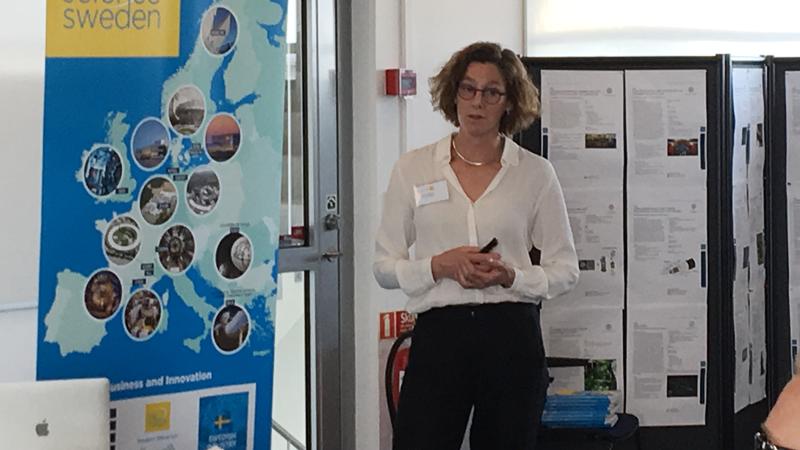 Stacey Sörensen, Lunds universitet, berättade om hur man strategiskt ser på Big Science på Lunds universitet.