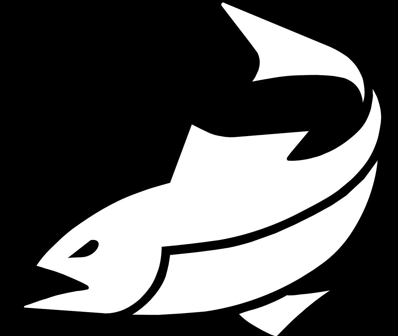 fish-311076_1280.png