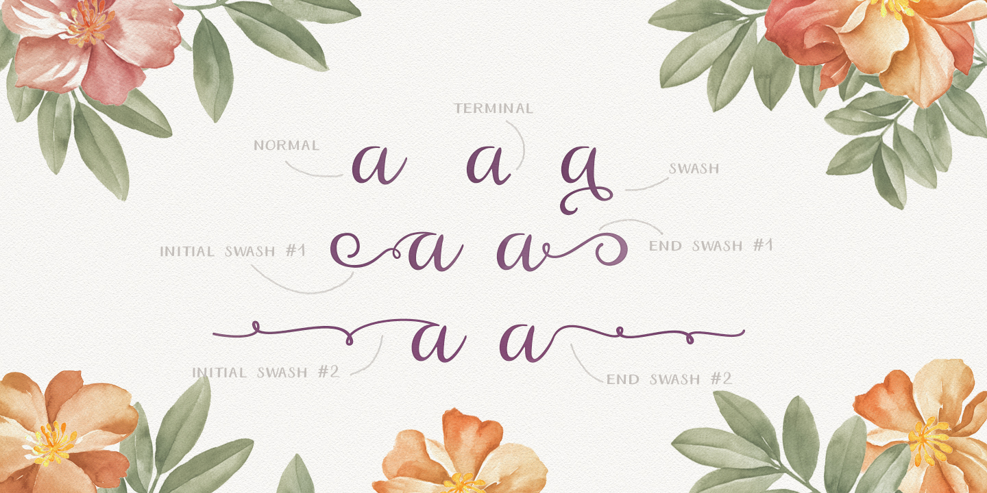 aristelle-preview-myfonts-2.jpg