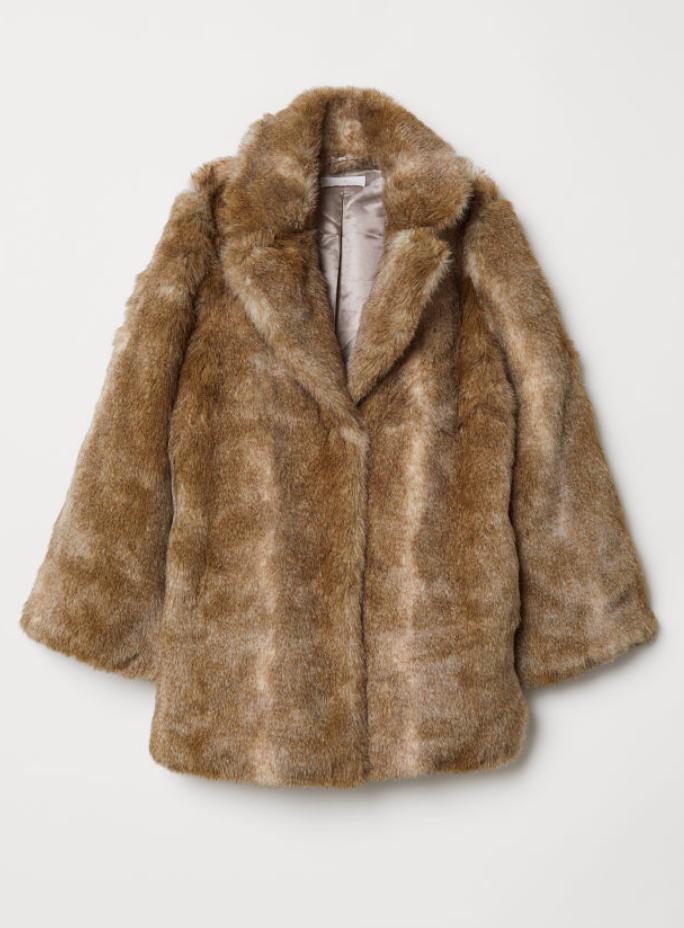 H&MFaux Fur Coat - (80€)