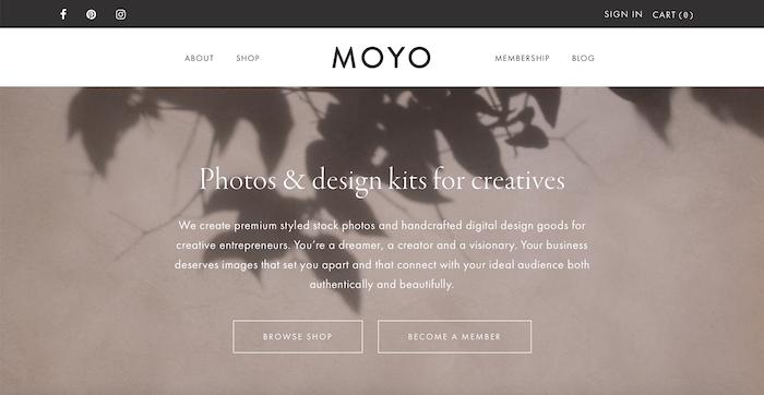 Moyo Studio