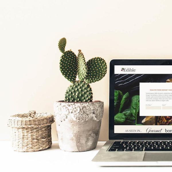 Edible Squarespace Website