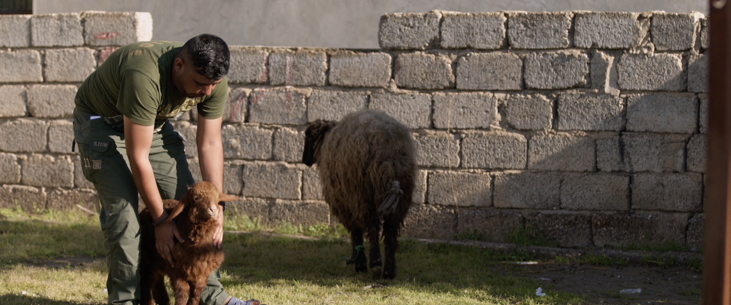 Soldier Khadoury tending to his sheep.png