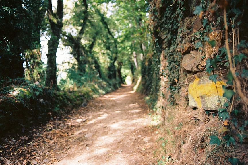 Ashram-The-Camino-de-Santiago-Hike.jpg