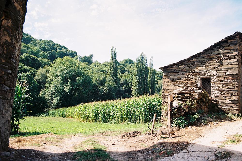 Ashram-The-Camino-de-Santiago-Nature.jpg