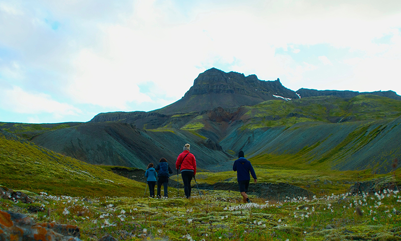 the-ashram-iceland-walking.jpg