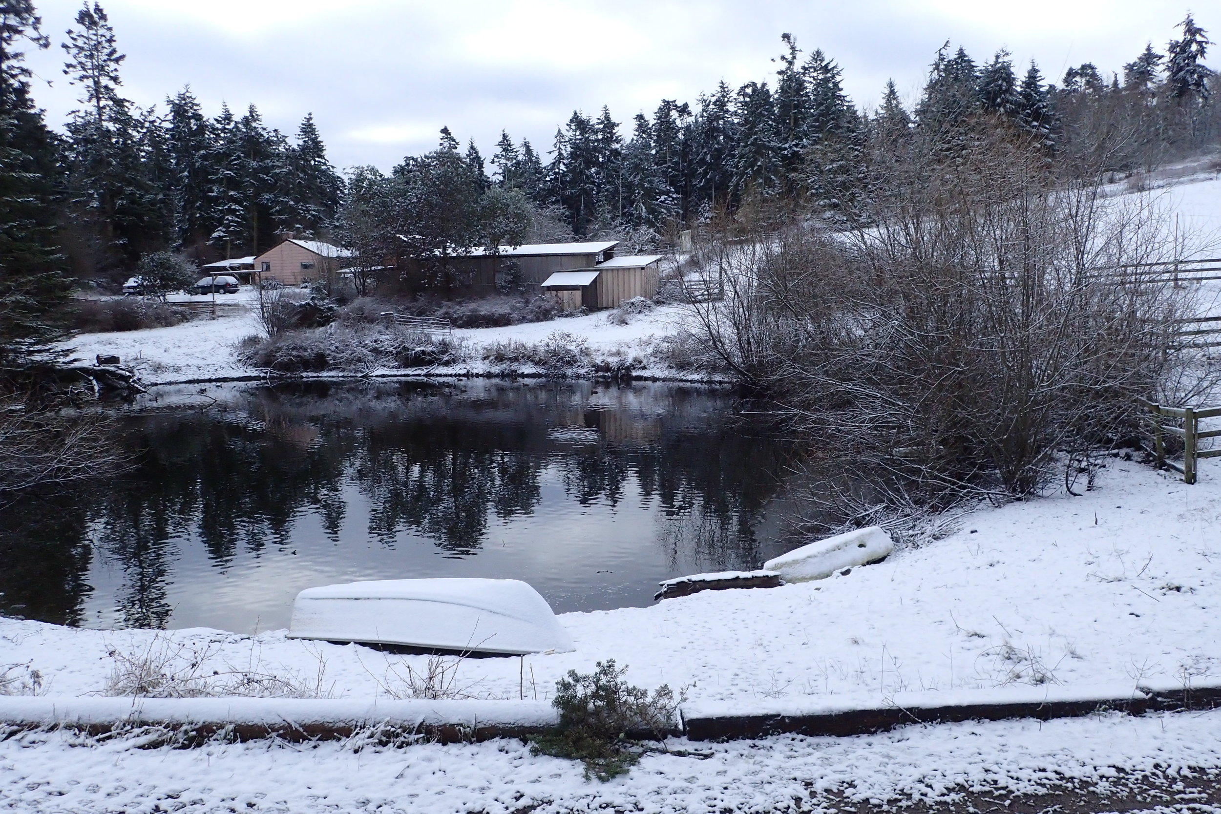 Northwest Winter