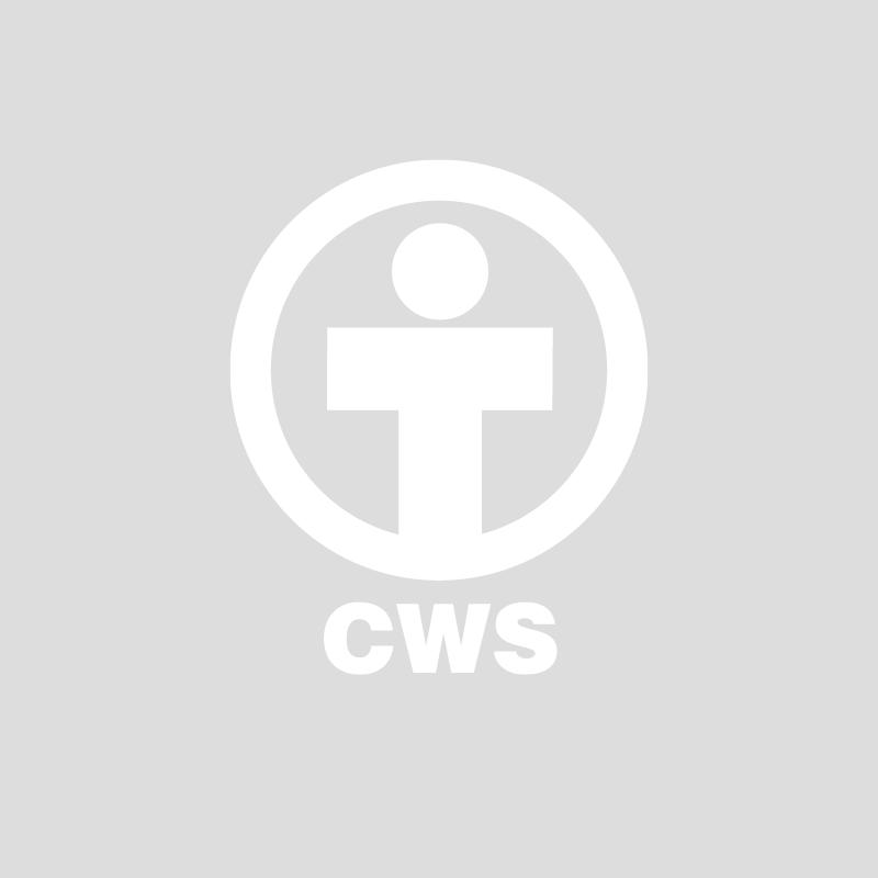 client-CWS.png