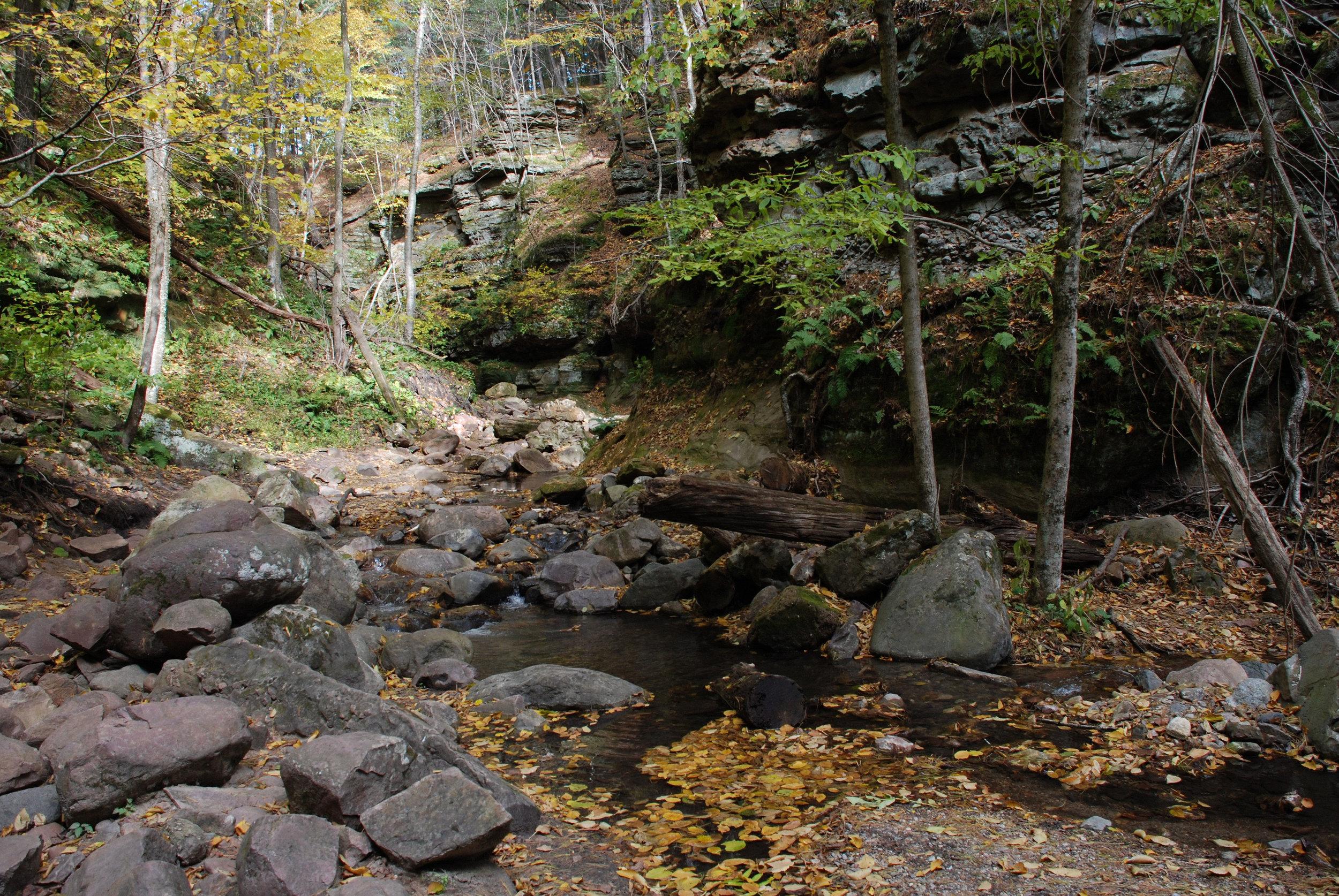 Creek 4.jpg