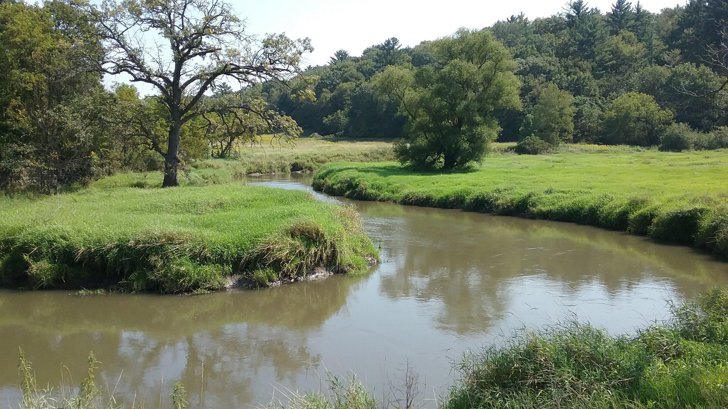 Baraboo River near Hwy 33 and Strawbridge Rd 2.jpg