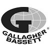 gallagher bassett grey.jpg