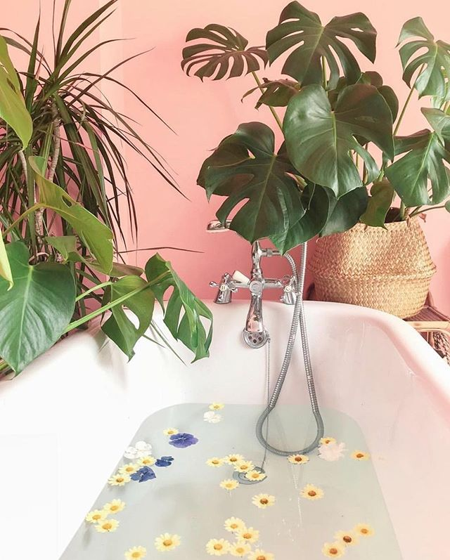 Dive into some well-deserved R&R...you deserve it! This self-care setup is everything. 💕  Via @farmhousefresh . . . #LoveMineSkincare #LoveMine #beautifulyou #veganskincare #crueltyfreeskincare #selfcaredaily #naturalskincareproducts #intentions #createcultivate #beautywithapurpose #restandrelax #manifesting #relaxing #sundayscaries #selfcarelove