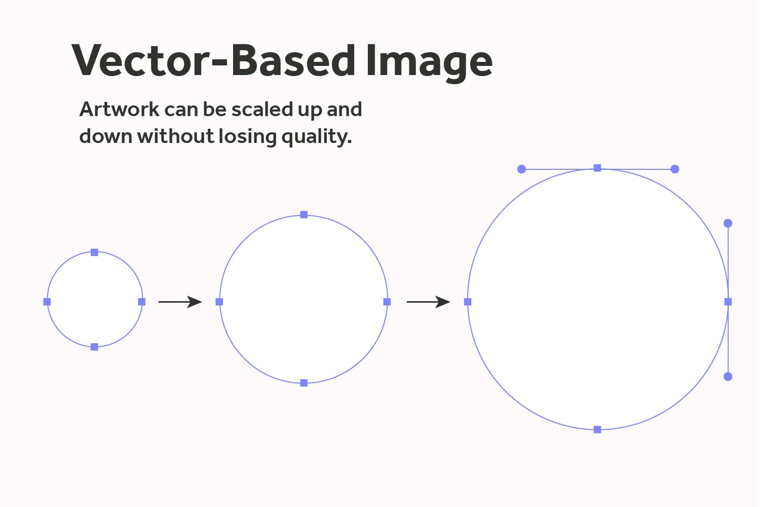 Vector-Based-Image