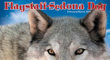 Flagstaff-Sedona Dog Magazine -