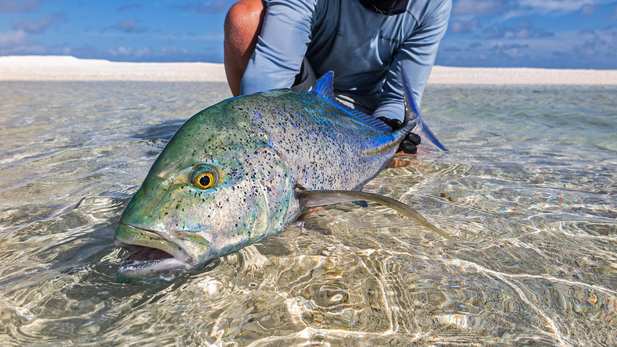 stb-fishing-14.jpg