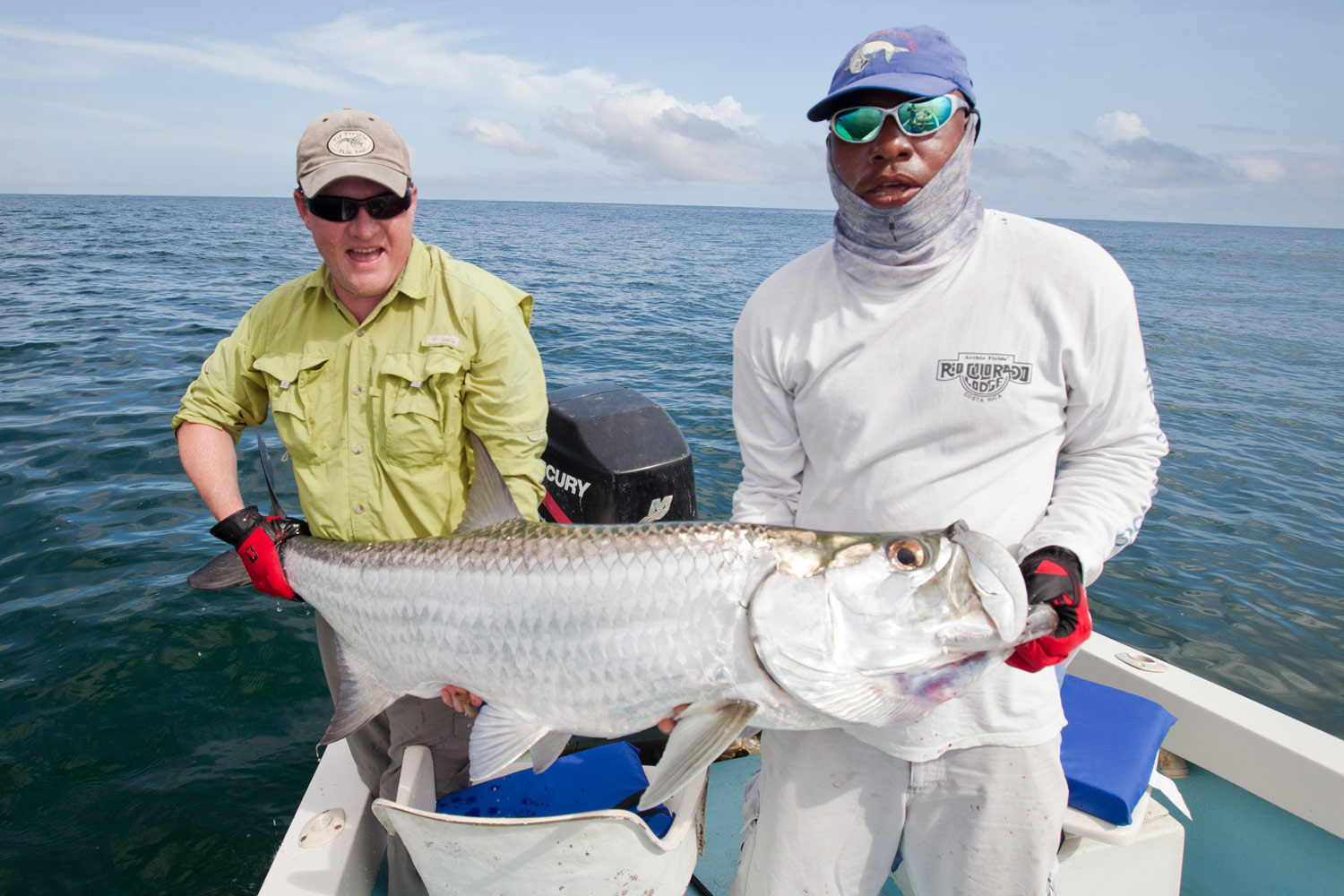 small-tarpon-costa-rica.jpg