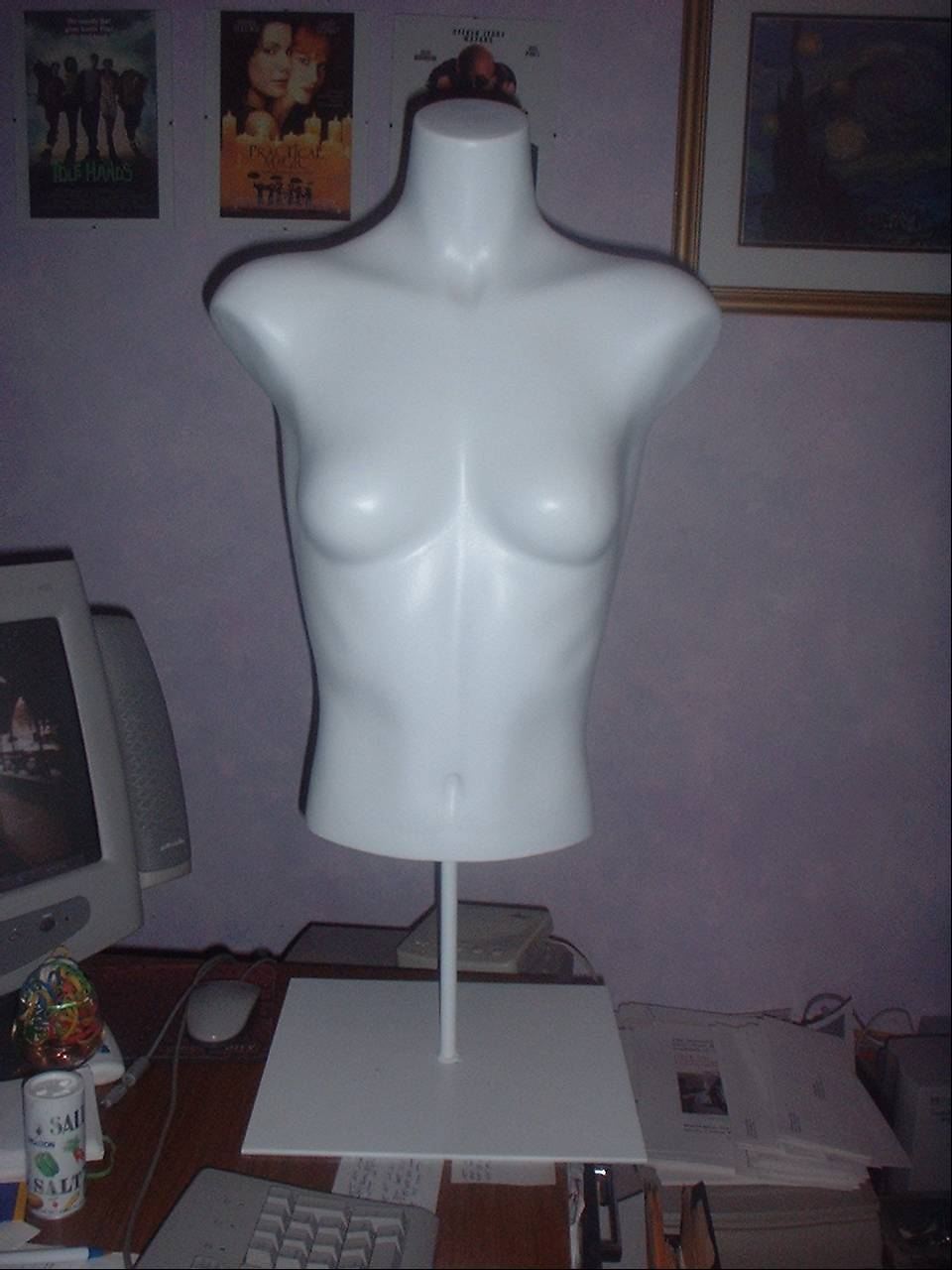 Female Torso Form