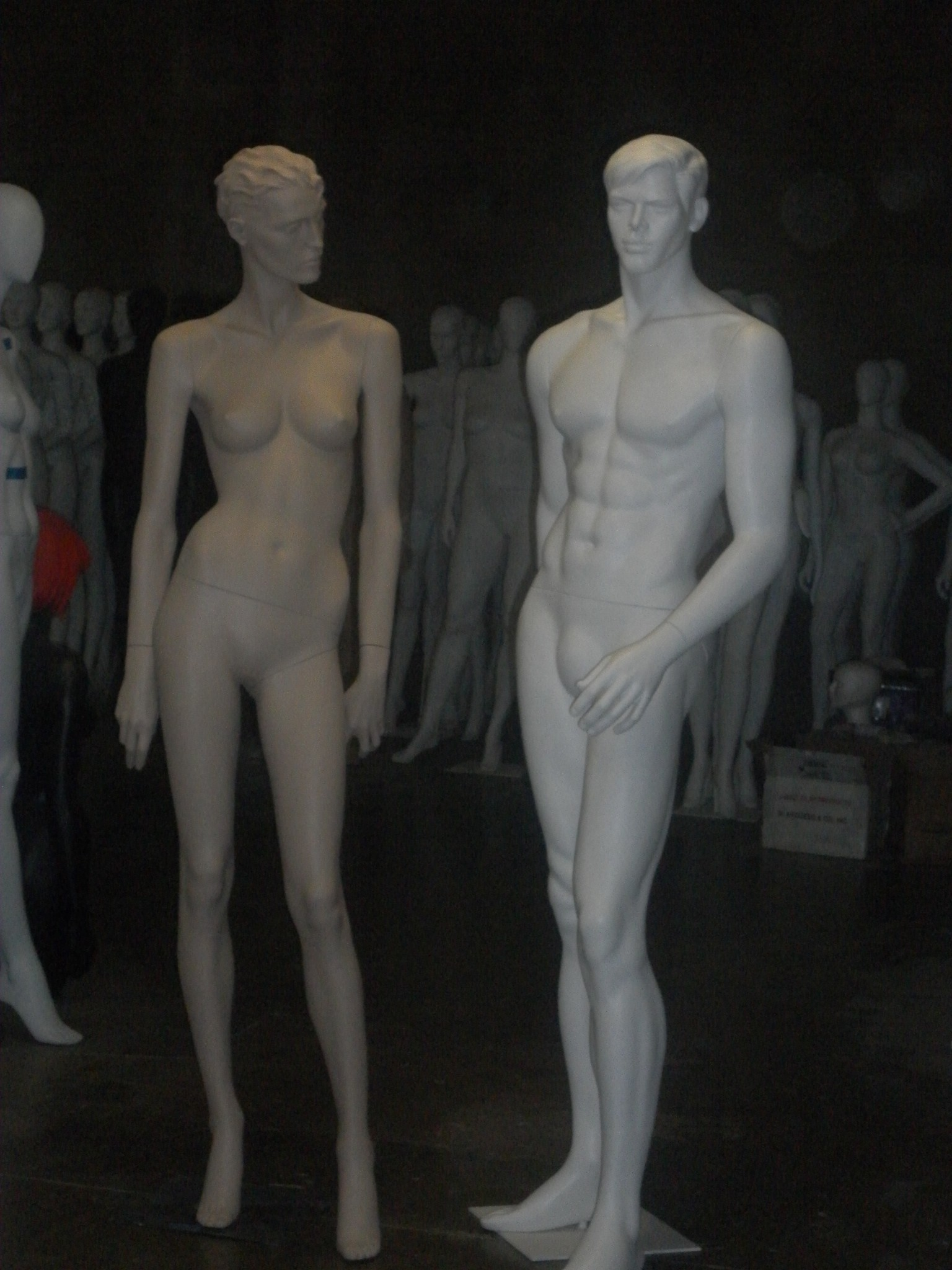 male and female, sculpted hair.jpg