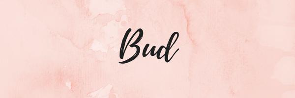 Copyright Sakura Rose LLC | Dallas, TX Home Organizing Services | Bud Package