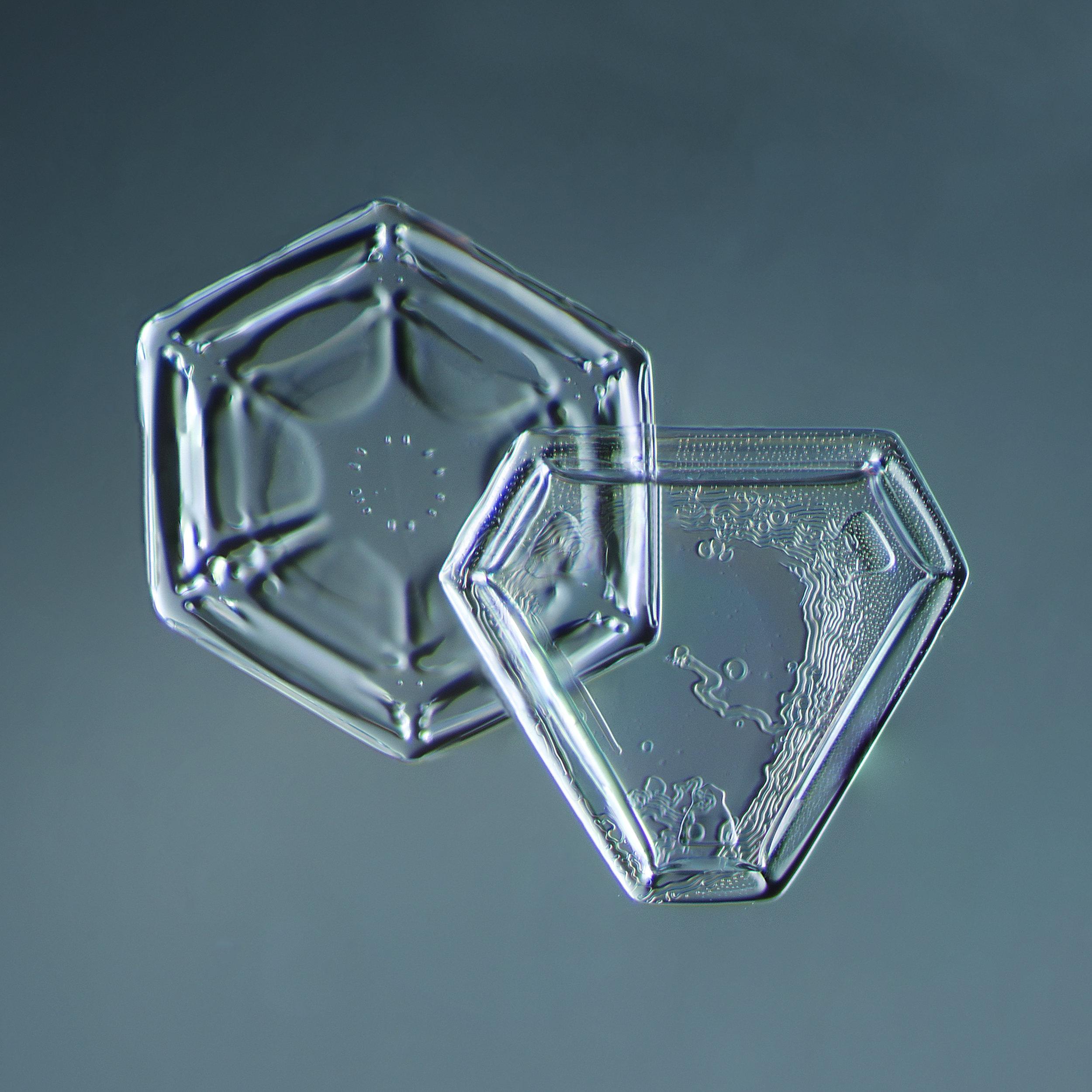 Snowflake 2014.02.09.005.1.JPG