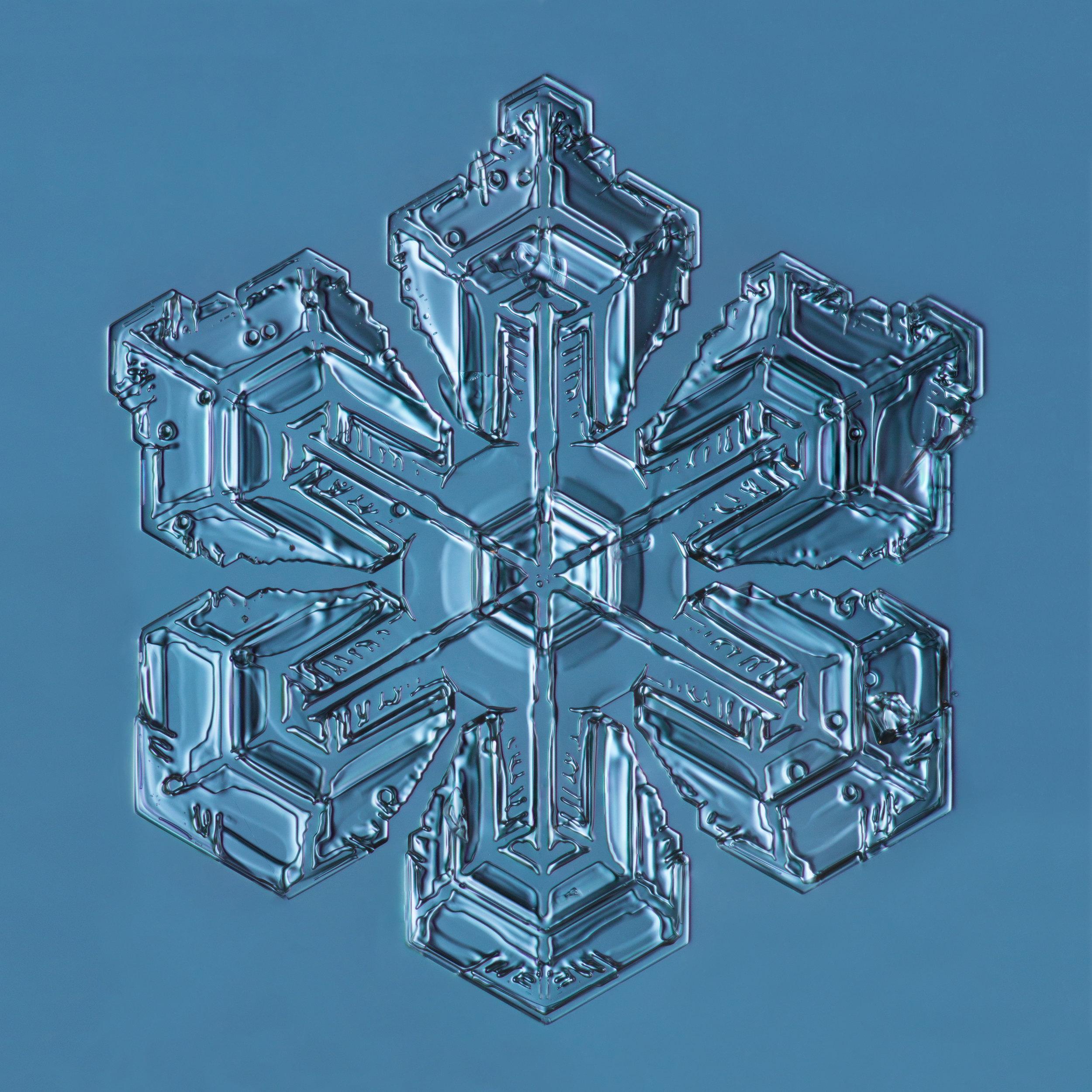 Snowflake 2015.01.26.001.1.JPG