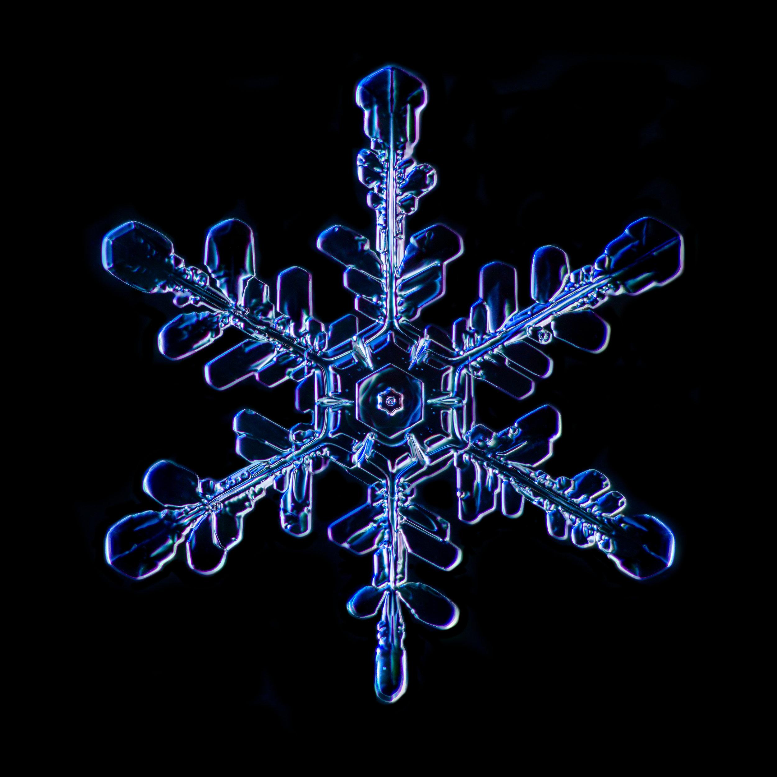 Snowflake 2015.02.02.002.JPG