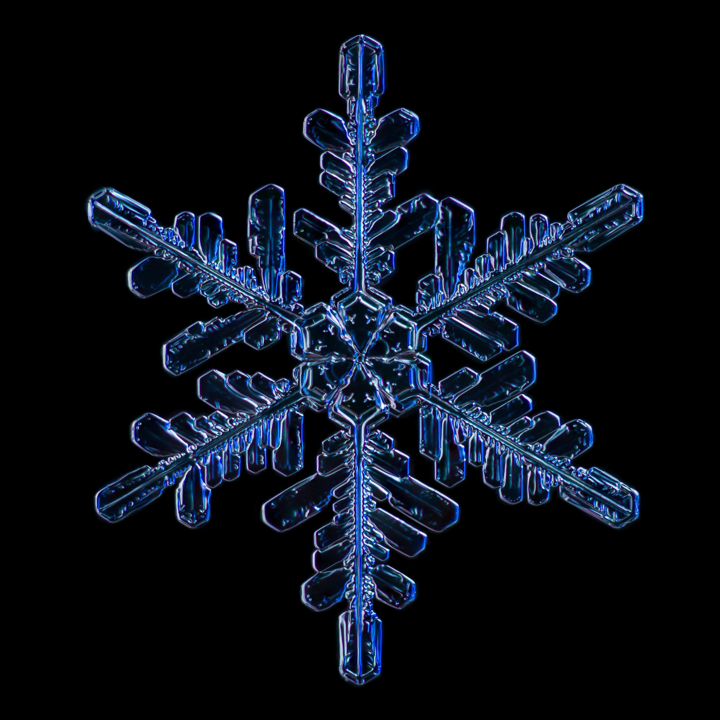 Snowflake 2015.02.02.007.JPG