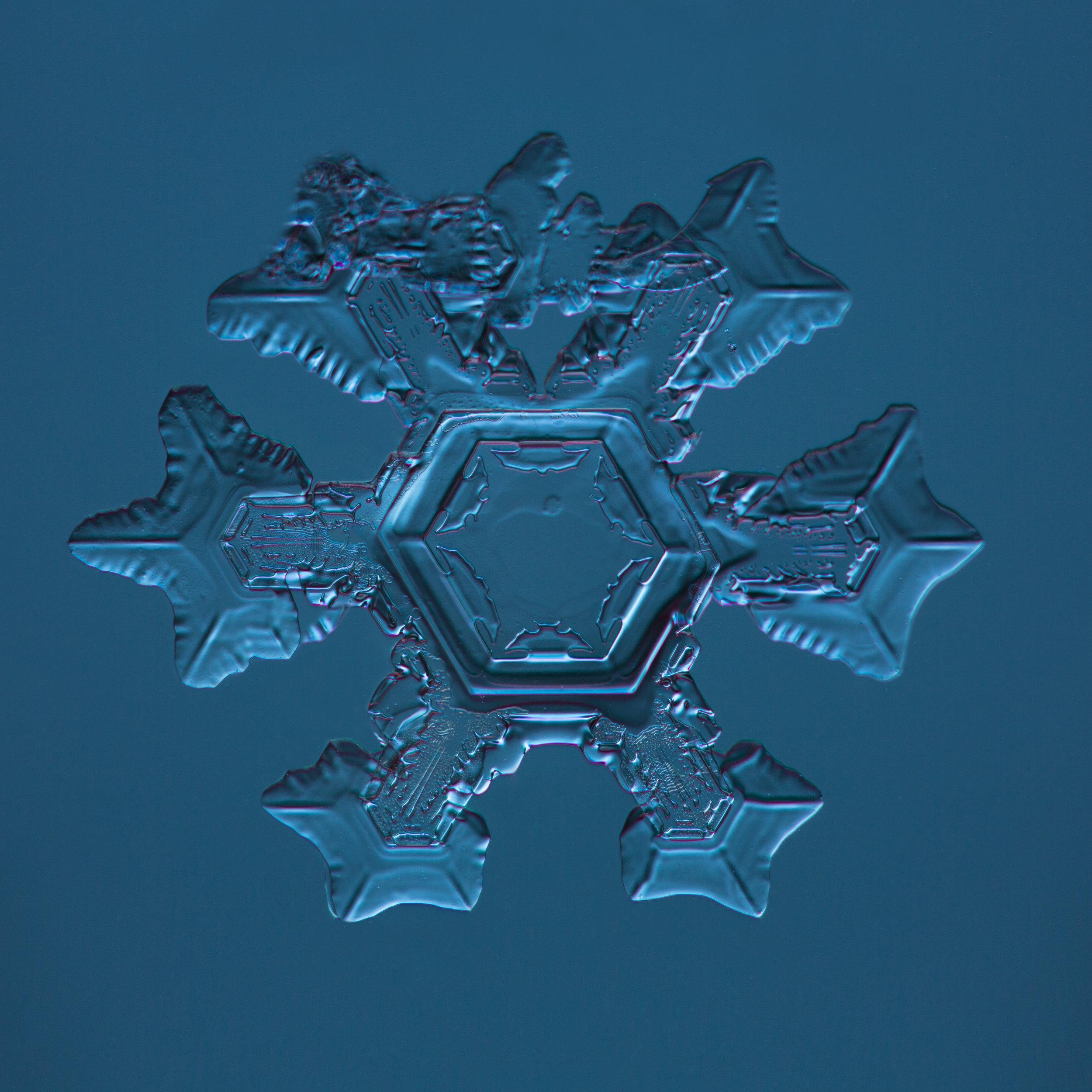 Snowflake 2015.02.04.005.JPG