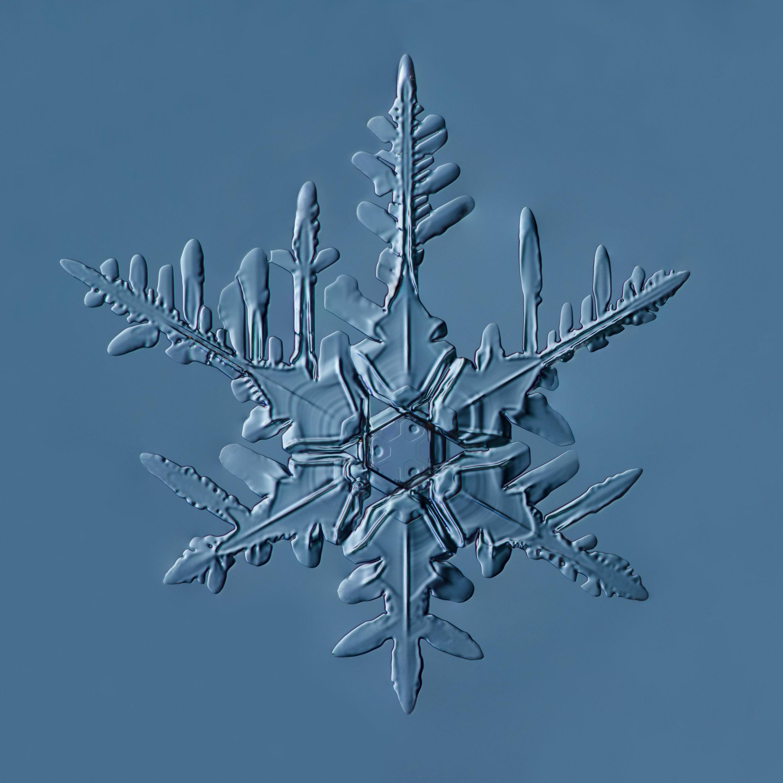Snowflake 2015.02.22.002.1.JPG
