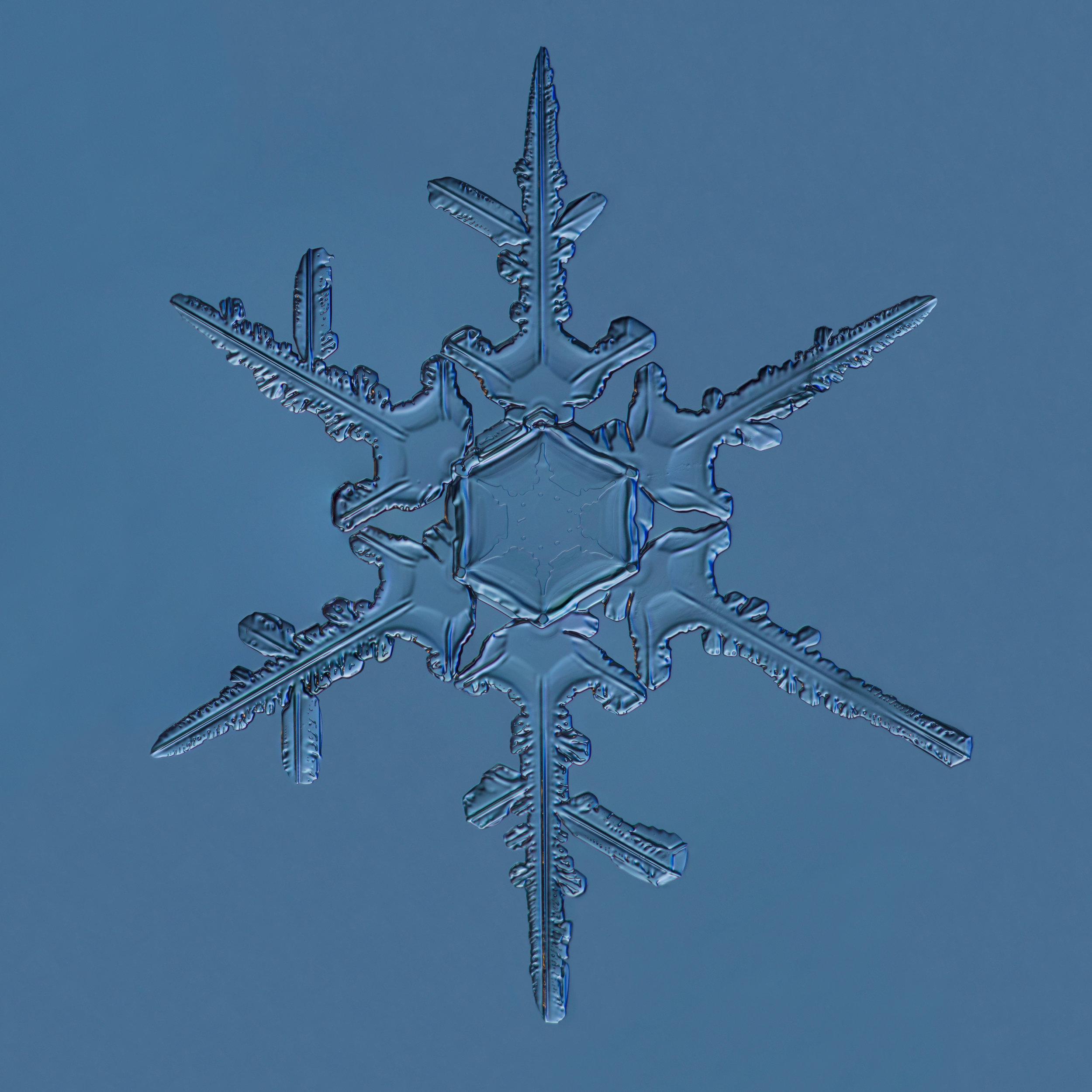 Snowflake 2015.02.22.010.1.JPG