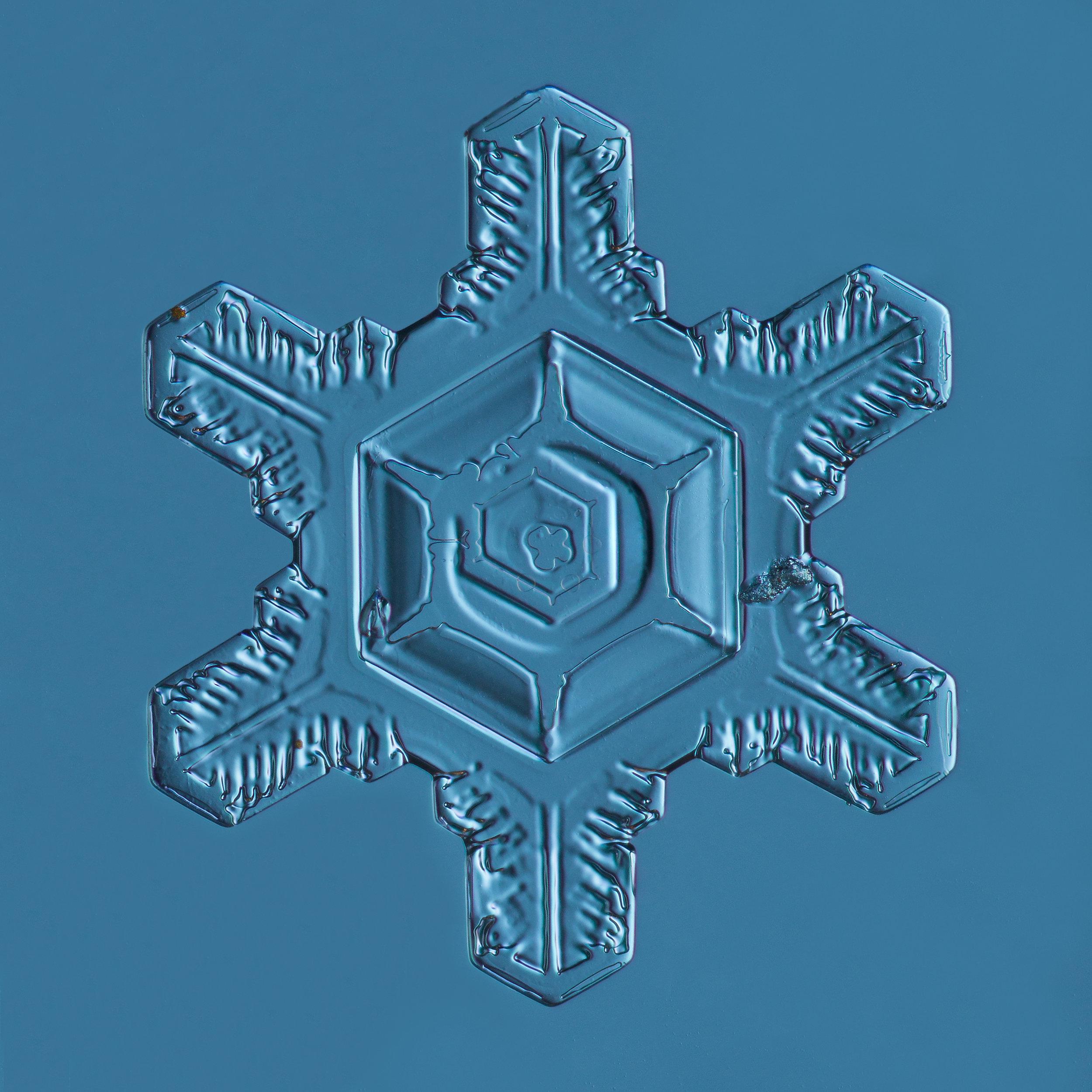 Snowflake 2015.02.25.002.JPG