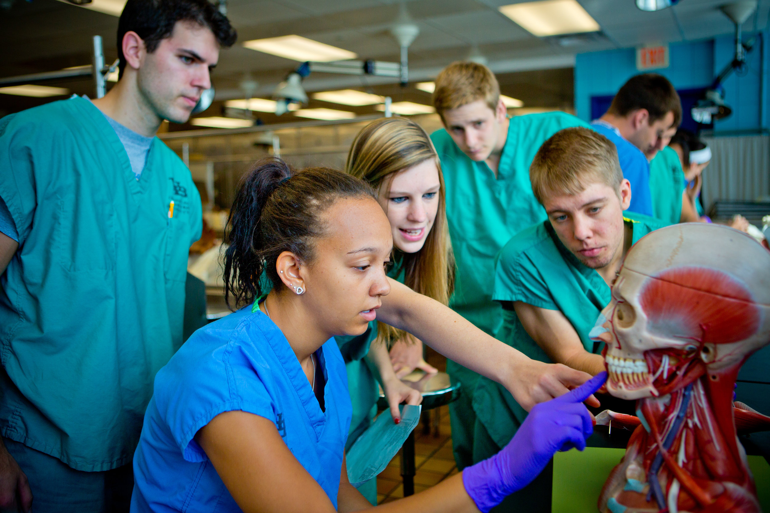 Summer Class in the Gross Anatomy Lab in the Biomedical Education Building