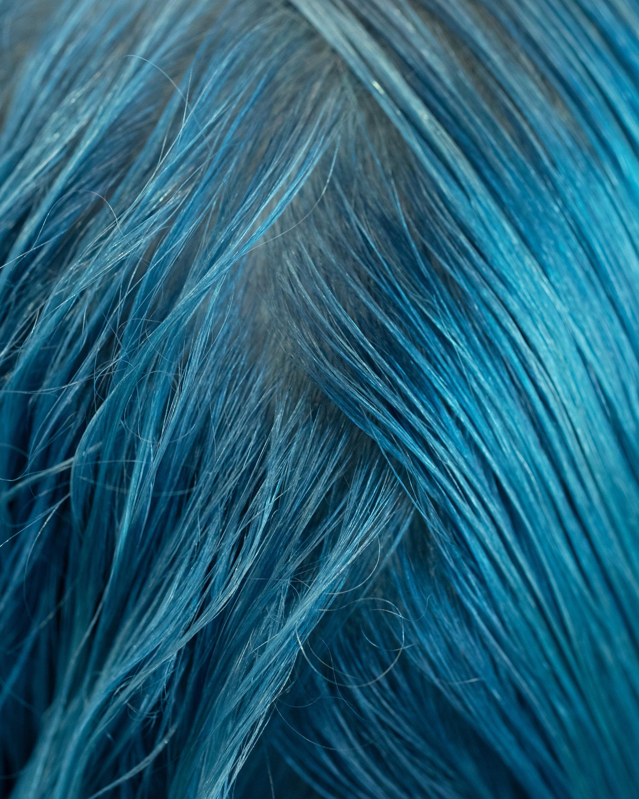 MalorieShmyr_HairMacros_7.jpg