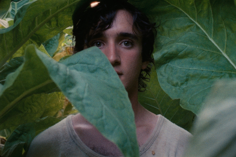 Adriano Tardiolo in a still from Alice Rohrwacher's 'Happy as Lazzaro'